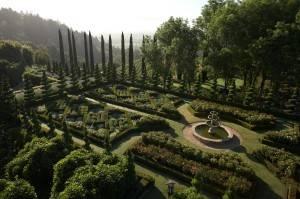 The gorgeous gardens at Newton Vineyard