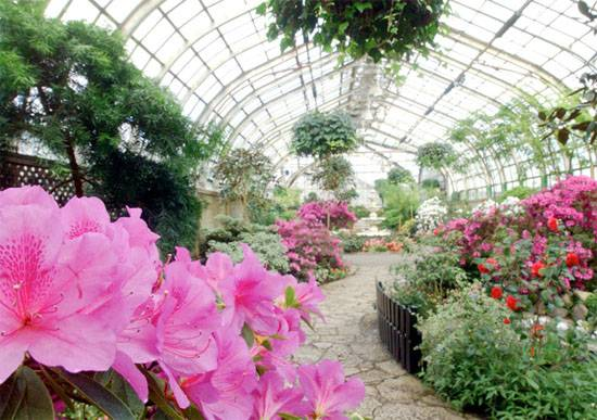April Showers Bring May Flowers: The Haute 5 Parks and Gardens in ...