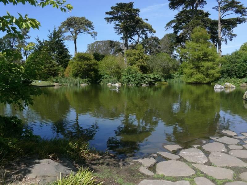 San Francisco Flower Garden Show Benefits San Francisco Botanical Garden With Raffle Haute
