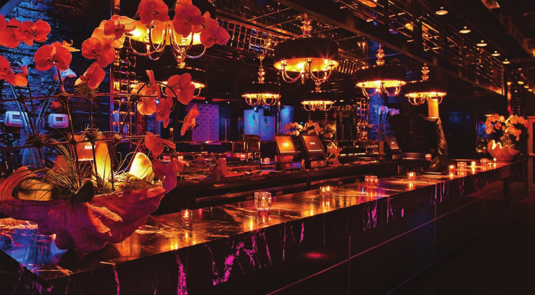 Top 5 Nightclubs In Miami Arkadia Mokai LIV At