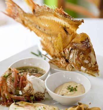 Fifi S Seafood Restaurant 8934 Collins Ave Miami Beach Fl 305 865 5665
