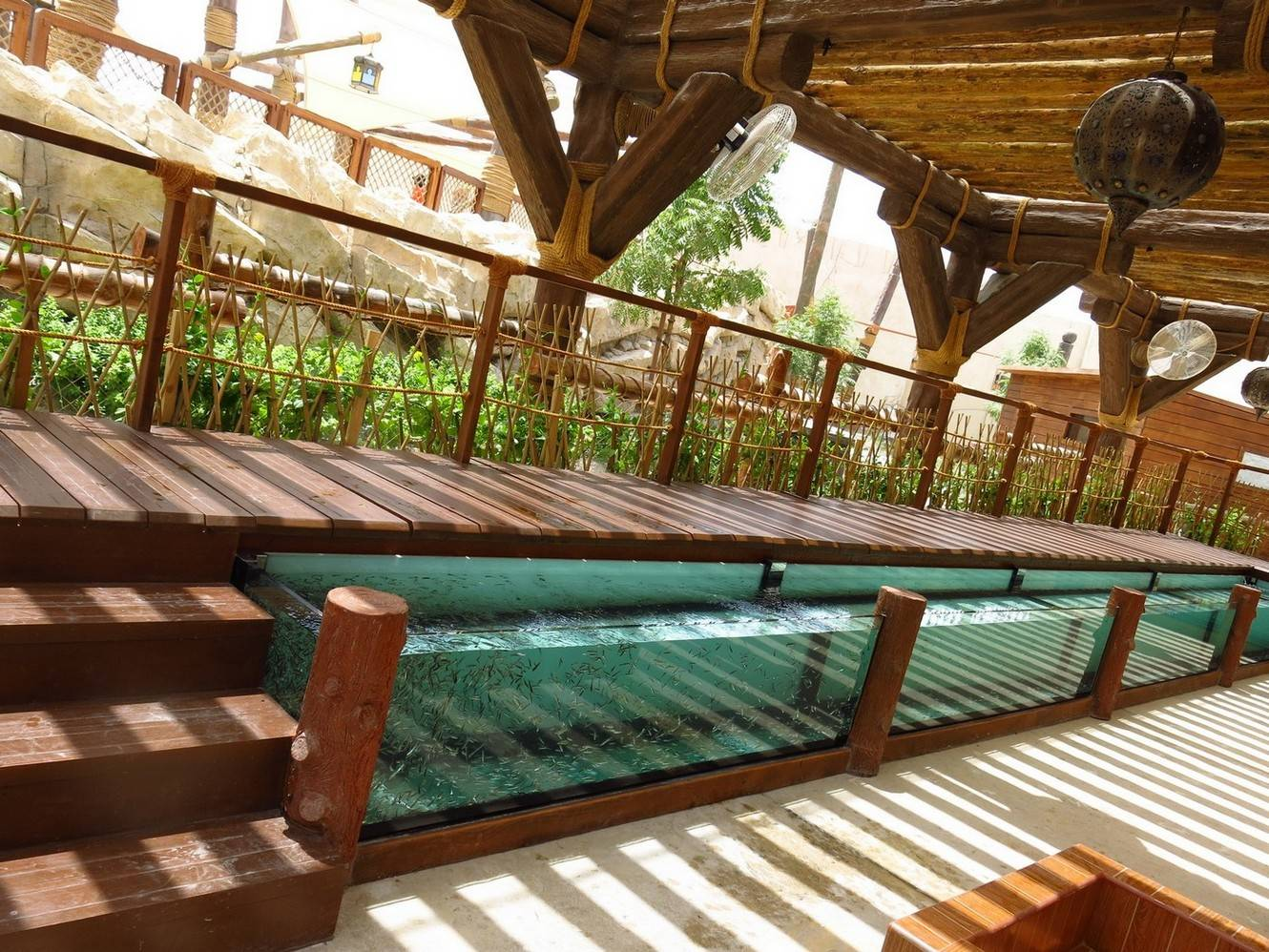 Abu dhabi 39 s first fish spa at yas waterworld haute living for Unusual pond fish