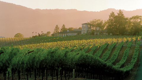 hall-vineyard-and-house.jpg