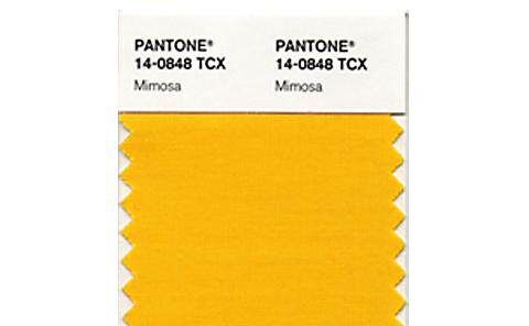 yellow_blog.jpg